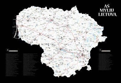 Lietuvos žemėlapis su smeigtukais, žemėlapis ant drobės, Lietvos zemelapis ant drobes, Pin and travel, Push pin map, Lithuania canvas map, Detalus lietuvos zemelapis-2022